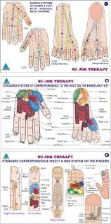 Sujok Therapy Points Chart Freeware 14 Read The Booklet Acupressure Reflex Points Link Http