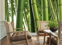 Fotobehang Bamboe Op Maat Kies Je Eigen Bamboe Behang