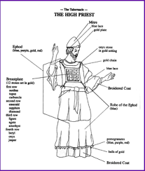 Color The Clothing Of The High Priest Kids Korner Biblewise