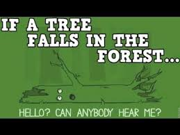 Image result for if a tree falls