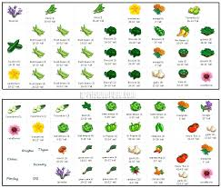 square foot garden spacing classy idea square foot gardening spacing square foot gardening vegetable spacing chart