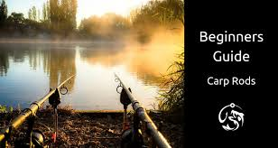 Beginners Guide To Carp Rods Buying Your First Set Of Rods
