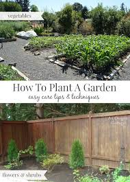 how to plant garden. How To Plant A Garden-easy Care Tips And Techniques For Flowers Vegetables. Garden
