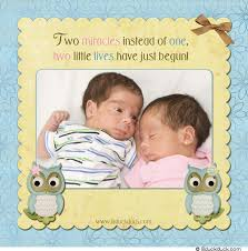 twin birth announcements photo cards baby owl birth announcement sweet photo pink girl