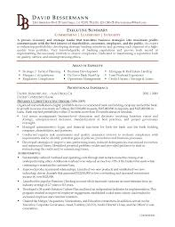 Executive Summary Sample For Resume Resume For Study