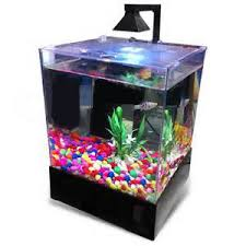 office aquarium. Perfect Office PERFECT New Fish Tank Aquarium Home Or Office Aqua Box With LED Lighting  15 Gallons Throughout