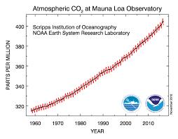 reversing carbon dioxide by planting trees dew harvest carbon dioxide concentration in the atmosphere as measured by the mauna loa observatory on hawaii
