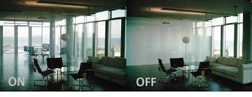 natural light office. privacy glass in the working environment emphasizing amount of natural light each room office