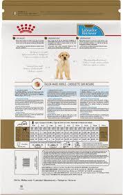 Lab Puppy Food Chart Royal Canin Labrador Retriever Puppy Dry Dog Food 30 Lb Bag
