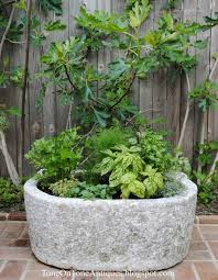 Kitchen Garden Trough Tone On Tone A Trough Herb Planter