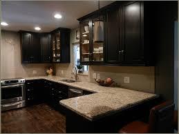 Dark Espresso Kitchen Cabinets Kitchen Amazing Espresso Kitchen Cabinets Startling Dark