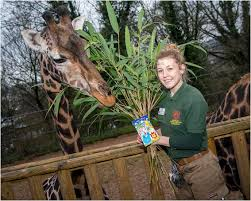 Birthday girl, Josie! – Dudley Zoo and Castle