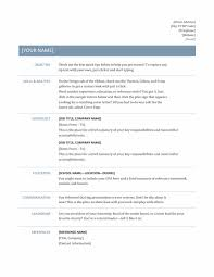 Template Professional Resume