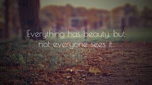 "Everything Has Beauty Quotes Best Of Confucius Quote ""Everything Has Beauty But Not Everyone Sees It"
