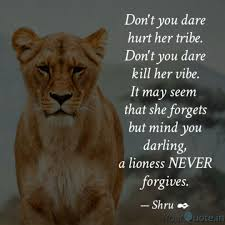 lioness and cubs quotes. Wonderful And Inside Lioness And Cubs Quotes