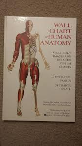 Wall Chart Of Human Anatomy For Sale In North Tonawanda Ny