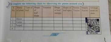 Complete The Following Chart By Observing The Plants Anro