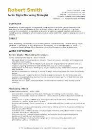 Resume Objectives For Marketing Digital Marketing Strategist Resume ...