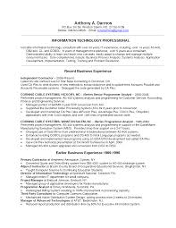 It Consultant Resume Berathen Com