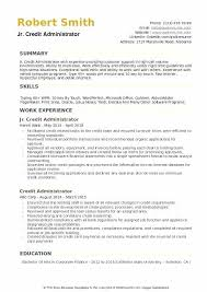 School Administrator Resume Interesting Salesforce Administrator Resume Example Examples Credit Letsdeliverco
