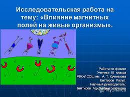 Магнитного Поля На Живые Организмы Реферат Влияние Магнитного Поля На Живые Организмы Реферат