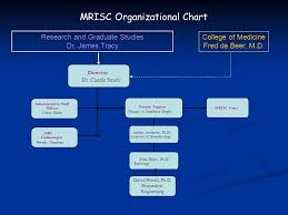 Graduate School Organizational Chart Mrisc Organizational Chart Research And Graduate Studies Dr
