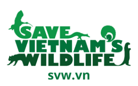 SAVE 500 PANGOLINS FROM ILLEGAL TRADE | Save Vietnam's Wildlife