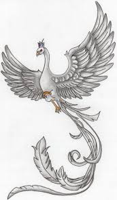 Part Of My Phoenix Drawings Making A Mural Are You Phoenix