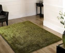 Shaggy Dark Green Area Rug