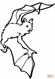 Small Picture Coloring Pages Animals Bat Coloring Pages Printable Bat