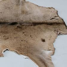 white tailed deer hide rug from curiosity interiors fur rugs