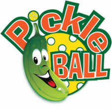 Image result for pickleball