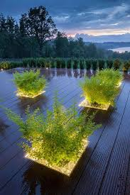 exterior lighting ideas. plant linear lighting outdoor feature led strip greenery deck exterior ideas