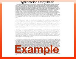essay about great expectations online