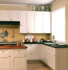 Small Picture Contemporary Style Kitchen Cabinets Modern Kitchen Cabinets