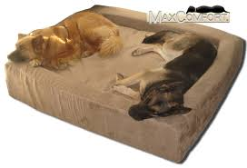 inspiring dog beds for big dogs on comfort nest memory foam bolster made in the u s a