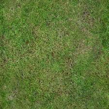 Grass clean decorating cheat sheets Pinterest Grasses