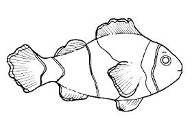 Risultati Immagini Per Disegno Pesci Stilizzati Fish Pesci
