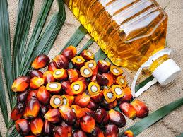 Palm Oil Palm Oil Prices Surge 40 In A Year The Economic