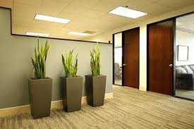 office pot plants.  Office Office Plants Pots Like These Could Keep The Dogs Out To Pot