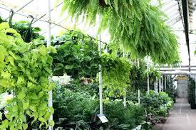 homedepot garden center at the home depot