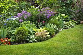 Garten: ein Garten für Faule