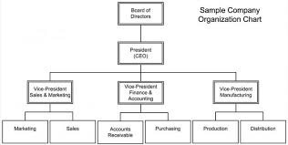 Sample Project Organization Chart Free Company Structure Chart Template Company Structure