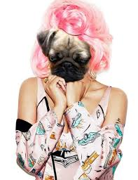 Pugi Minaj tried not to look downhearted as she exited the hair ... via Relatably.com