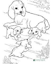 Grab your favorite crayons, markers or water colors and use the guides with each image to choose the right colors and make a nice picture. Dog Coloring Pages