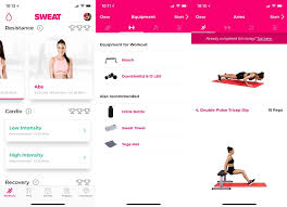 the sweat app was created by australian fitness star kayla itsines after the runaway success of her bbg body guide cult program which inspired