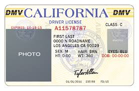Drivers Permit Seed Packet California Template License California