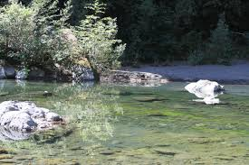 With almost 400 campgrounds and rv parks across california, reserveamerica.com can help you discover the pacific coast, towering redwoods, or the stunning landscapes of the golden state. Grizzly Creek Redwoods Sp Jenn And Jeff