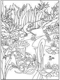 Welcome To Dover Publications Boost At The Aquarium Coloring Book