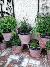 small space herb garden container herb garden ideas inspirational best small space garden ideas images on